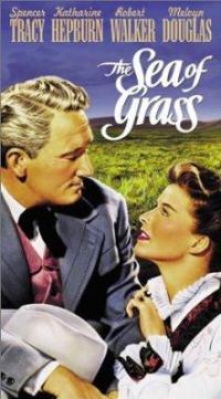 Il Mare d'erba