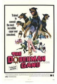 La Gang dei doberman colpisce ancora