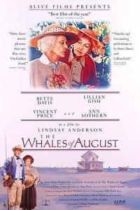 Le Balene d'agosto