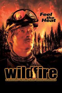 Wildfire - all'improvviso un maledetto amore