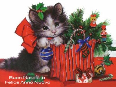 Un altro gattino ad augurare un Felice Natale