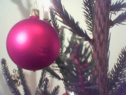 Foto Natalizie - Pallina di Natale