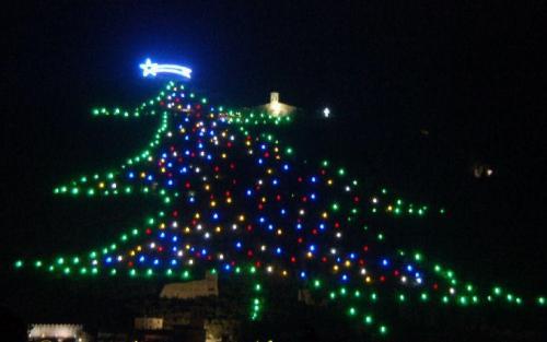 Foto Natalizie - Albero Natale - Gubbio