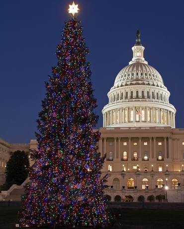 Natale a Washington - Casa Bianca