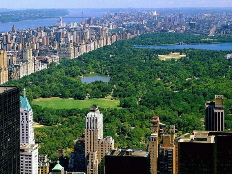 Scarica ad alta risoluzione for Immagini new york a natale