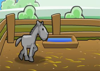 Gioco Corsa di Cavalli