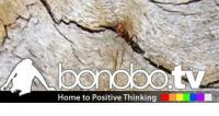 Bonobo TV